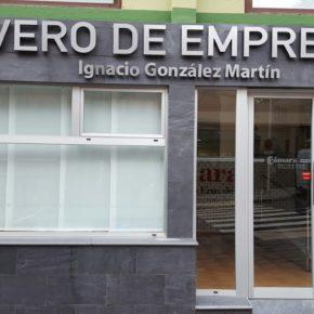 Cs logra el compromiso unánime del Ayuntamiento de Santa Cruz de La Palma para instar a la Cámara de Comercio a cambiar el nombre del vivero de empresas Ignacio González