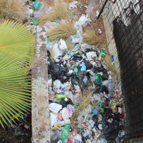 Ciudadanos denuncia la falta de limpieza y el estado de insalubridad de la calle La Estrella en Santa Cruz de Tenerife