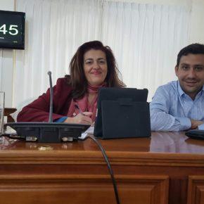 Cs consigue que el Ayuntamiento de Arrecife dé luz verde a la modificación de la Ordenanza Municipal Reguladora de las licencias de vados