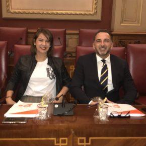 """Ciudadanos rechaza que CC y PP """"sigan haciendo oídos sordos"""" a las propuestas de la oposición en Santa Cruz de Tenerife"""