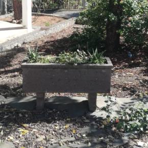 Ciudadanos denuncia el lamentable estado de abandono en el que se encuentra el Parque de Sintes