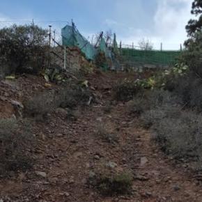 Cs solicita al Ayuntamiento de Arico que cumpla con los acuerdos plenarios y dote de servicios básicos a Fuente Nueva
