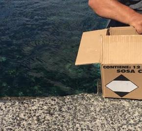 Ciudadanos denuncia el uso de sosa caústica para limpiar las escalinatas del muelle de Arrieta