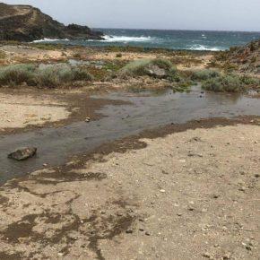 Cs pregunta al Ayuntamiento de Granadilla de Abona por las medidas para evitar la sobrecarga de los emisarios submarinos