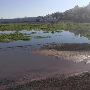 Ciudadanos denuncia vertidos fecales en la zona residencial Marcastel (Yaiza)