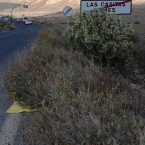 Ciudadanos pide que se instale un paso de peatones en la carretera que va desde Las Casitas hasta Femés