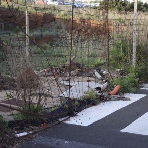 Ciudadanos exige a CC que dé solución a las deficiencias que presenta el lagunero barrio de Geneto