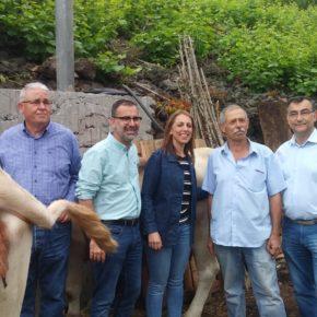 """Mariano Cejas (Cs): """"Ciudadanos se compromete a reactivar el sector primario para evitar la despoblación en La Palma"""""""