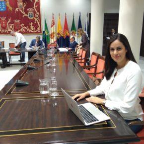 Vidina Espino denuncia que Canarias apenas ha recibido 31 millones del Estado para afrontar la crisis provocada por la COVID-19