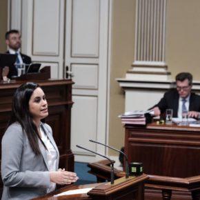 Espino urge al Gobierno a adoptar más medidas para frenar la destrucción de empleo en Canarias