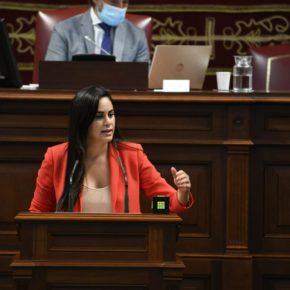 Vidina Espino pide al Parlamento canario que use el lenguaje de signos en todos los plenos y comisiones que celebre la Cámara