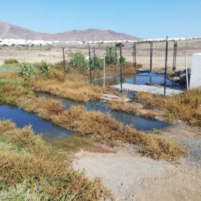 Ciudadanos pide una solución definitiva a los vertidos de aguas fecales en la urbanización El Partidor