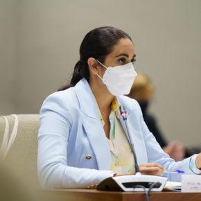 Vidina Espino propone que se prorrogue un año la tarifa plana de los autónomos para que puedan aprovechar la recuperación