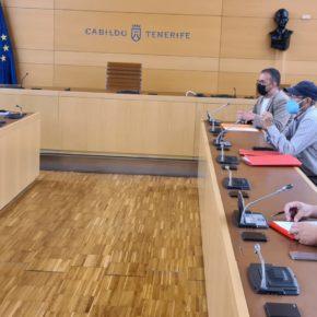 Cabildo y Santa Cruz preparan un proyecto para una nueva rotonda en Tíncer